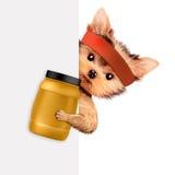 Perro divertido que sostiene el envase con la nutrición del deporte Fotografía de archivo