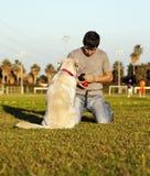 Perro e instructor de Labrador con los juguetes del Chew en parque Fotografía de archivo libre de regalías