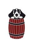 Perro en barril Fotografía de archivo