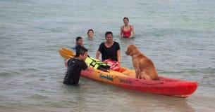 Perro en el kajak Imagen de archivo