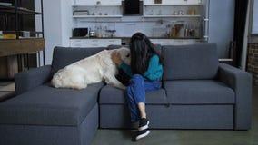 Perro en el sofá que lame al dueño indio joven metrajes