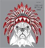 Perro en la cucaracha india coloreada Foto de archivo libre de regalías