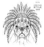 Perro en la cucaracha india Tocado indio de la pluma del águila Tienda extrema del deporte Fotografía de archivo libre de regalías