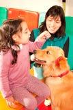Perro entrenado Foto de archivo