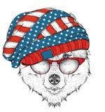 Perro esquimal del drenaje de la mano en un sombrero de los E.E.U.U. Ilustración del vector Imagen de archivo libre de regalías