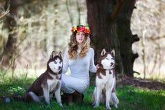 Perro esquimal y la muchacha fotos de archivo libres de regalías