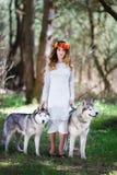 Perro esquimal y la muchacha Foto de archivo