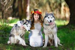 Perro esquimal y la muchacha Imágenes de archivo libres de regalías