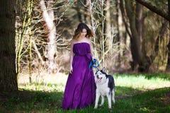 Perro esquimal y la muchacha Foto de archivo libre de regalías