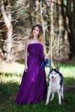 Perro esquimal y la muchacha Imagen de archivo