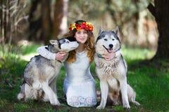 Perro esquimal y la muchacha Fotos de archivo