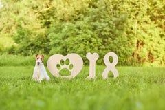 Perro feliz adorable del fox terrier en el greetin del Año Nuevo del parque 2018 Fotos de archivo libres de regalías