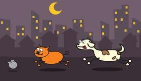 Perro, gato, ratón que se cobra Imagen de archivo libre de regalías