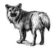 Perro Línea arte ilustración del vector