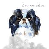 Perro lindo - barbilla japonesa ejemplo de la acuarela aislado ilustración del vector