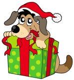 Perro lindo en el sombrero de Santas Foto de archivo
