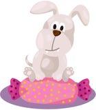 Perro lindo que se sienta en la almohada del caramelo Fotos de archivo