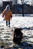 Perro para un paseo fotos de archivo