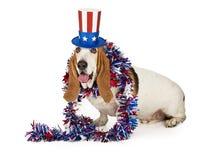 Perro patriótico americano de Basset Hound fotos de archivo