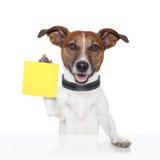 Perro pegajoso de la bandera de la nota Imagen de archivo libre de regalías