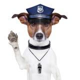 Perro policía Foto de archivo