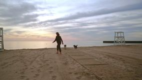 Perro que camina de la mujer en la playa en la salida del sol Dos perros en paseo en la playa metrajes