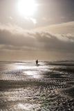 Perro que camina de la persona en el día tempestuoso en la playa Imagen de archivo