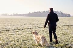 Perro que camina del hombre maduro en Frosty Landscape Imagen de archivo libre de regalías