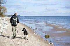 Perro que camina en la playa Imagen de archivo