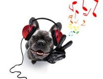 Perro que escucha la música imagenes de archivo