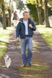 Perro que recorre del hombre en parque del otoño Imagen de archivo libre de regalías