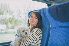 Perro que viaja en tren con su dueño imágenes de archivo libres de regalías