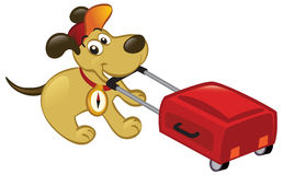 Perro que viaja que tira de un equipaje Imagenes de archivo