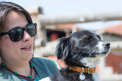 Perro querido y su amigo Imagen de archivo libre de regalías