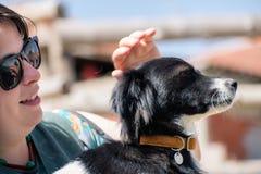 Perro querido y su amigo Foto de archivo