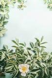 Perro-rosas con las flores blancas en fondo azul claro Foto de archivo