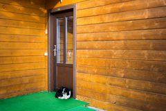 Perro sin hogar de Llittle que miente debajo de puerta Imágenes de archivo libres de regalías