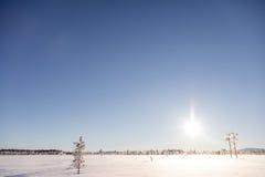 Perro sledding en Laponia Imágenes de archivo libres de regalías