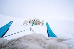 Perro sledding Qeqertarsuaq Groenlandia Imágenes de archivo libres de regalías