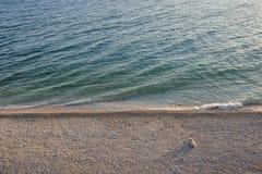 Perro solo en una playa Foto de archivo