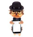 Perro vestido como gángster de la mafia con el teléfono Imagen de archivo libre de regalías