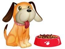 Perro y alimento Fotos de archivo