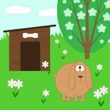 Perro y casa Fotografía de archivo libre de regalías
