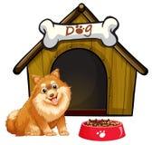 Perro y casa Foto de archivo