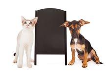 Perro y Cat With Chalkboard Sandwich Sign Fotografía de archivo libre de regalías