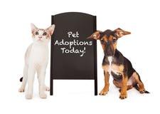 Perro y Cat With Pet Adoption Sign Foto de archivo libre de regalías