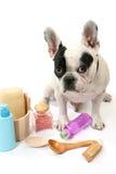 Perro y champú Fotografía de archivo