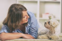 Perro y dueño en el sofá en hogar fotos de archivo