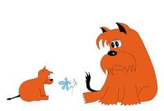 Perro y flor rojos Fotografía de archivo libre de regalías