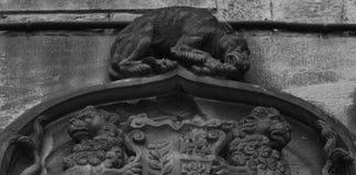 Perro y leones Fotos de archivo